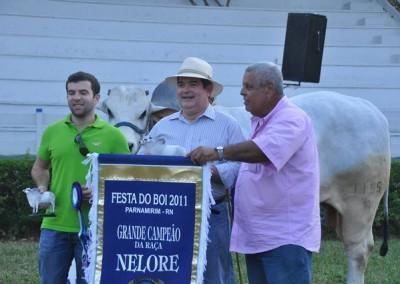 Festaboinelo8_2011