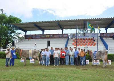Festaboipardo6_2011